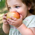Healthy Meals For Preschoolers Raleigh