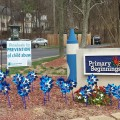 Pinwheels for Prevention of Child Abuse