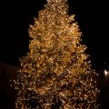 Raleigh holiday events for families