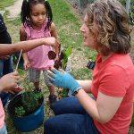 planting-in-preschool-garden-Raleigh